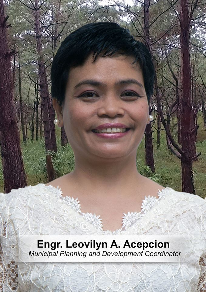 Engr. Leovilyn A. Acepcion